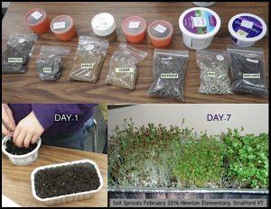 Soil sprouts_7types_7days_Newton_2016